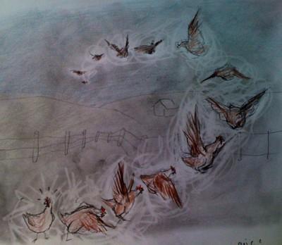 flying fowl